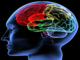 Rehabilitation for Persons with Neurodegenerative Disorders